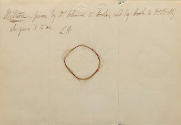 Alleged lock of Milton's hair from Hunt's Book of           Hair