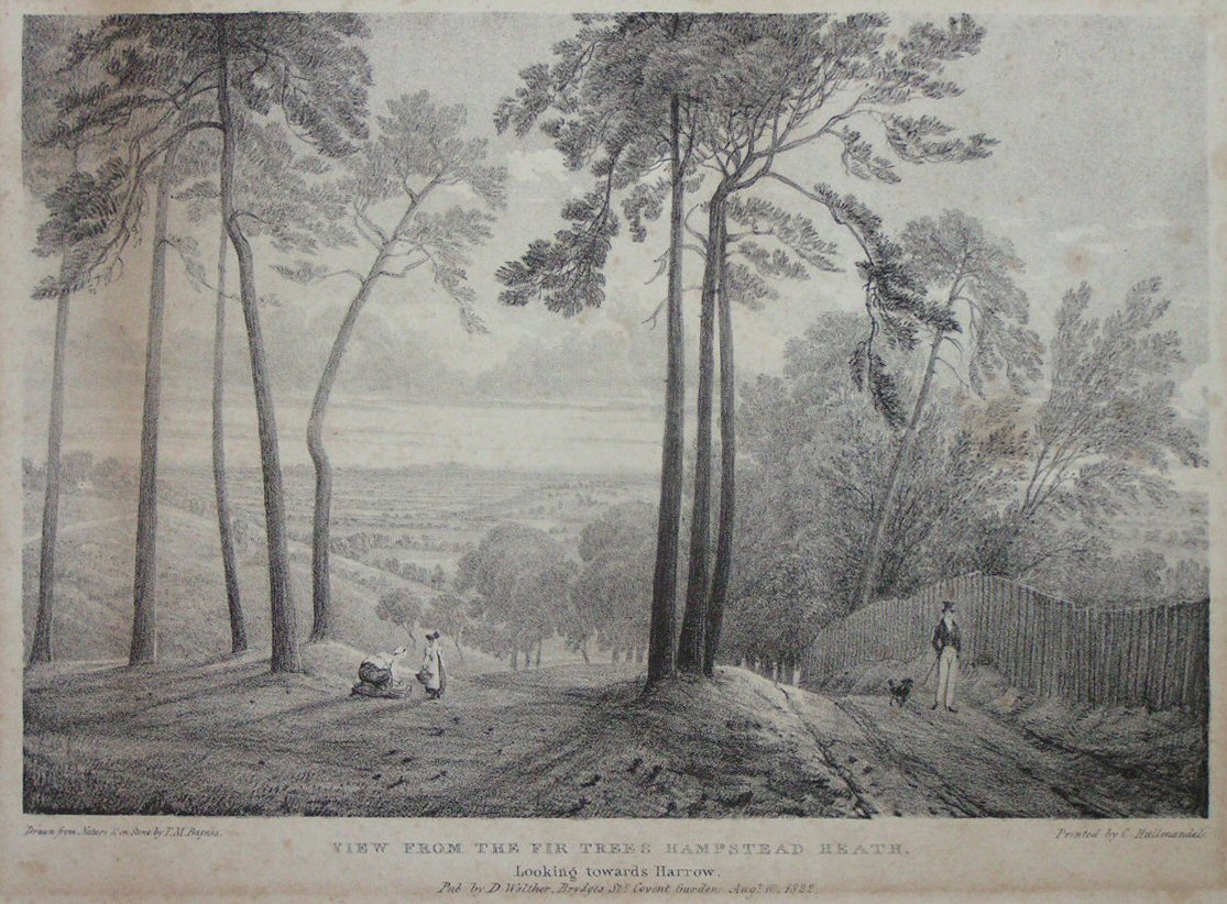 View from the Fir Trees, Hampstead Heath, 1821. Click to enlarge.