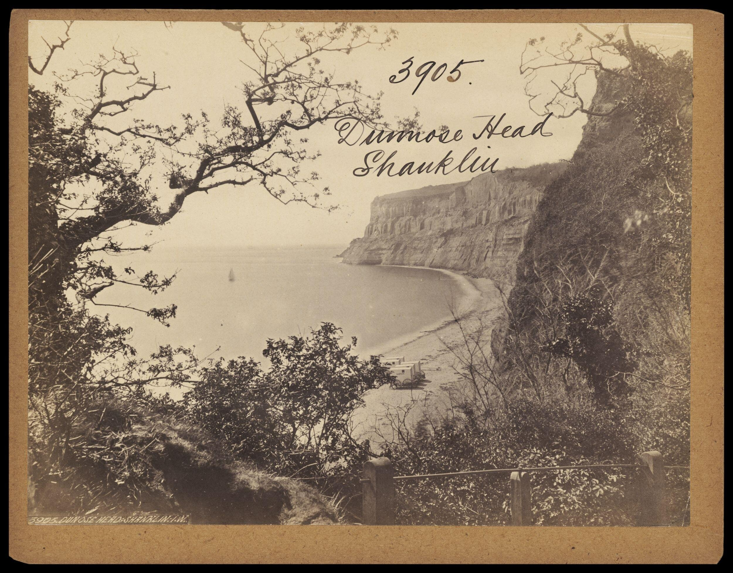 Photograph by Francis Frith; Dunnose Head, Shanklin c.1860 (Victoria and Albert         Museum E.208:3187-1994). Click to enlarge.